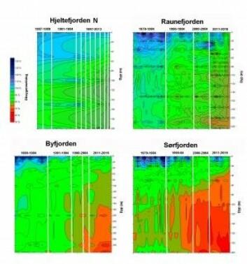 Utviklingen av oksygenmetning fra ulike dyp i Hjeltefjorden, Raunefjorden, Byfjorden og Sørfjorden i ulike perioder i tidsrommet 1979 til 2016. Figurene viser at oksygenmetningen i vannsøylen synker mest i Sørfjorden og Byfjorden. Skillet mellom ulike prøvetakingsperioder er vist med hvite streker. (Figur: Uni Research)