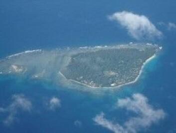 Stillehavsøya Ahamb fra lufta. (Foto: Privat)