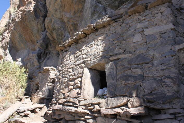 Noen av hodeskallene er funnet på gravstedet Yuraq Qaqa. (Foto: Matthew C. Velasco/Proyecto Bioarqueológico Coporaque)