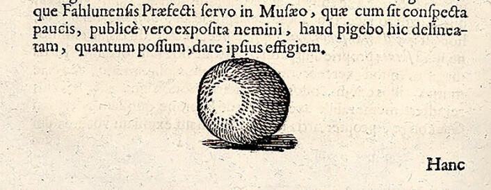 Schefferus beskrev gand som en liten kule, som i Sverige ble kalt gand-tyre. Han har avbildet en gand-tyre i boken Lapponia. (Illustrasjon: Johannes Schefferus / NTNU UB)