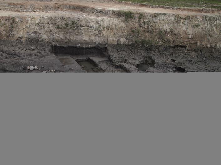 Utgravningen i Poggetti Vecchi i Italia. (Bilde: PNAS)