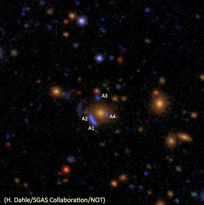 Gravitasjonslinsen SDSSJ1732+3411 er ett av objektene som James Webb-teleskopet skal rettes mot i løpet av de første fem månedene det er i drift. De blålige objektene merket A1-A4 er i virkeligheten fire bilder av den samme, fjerne galaksen. Årsaken til at vi ser fire bilder, er at lyset fra den fjerne galaksen er blitt avbøyd i tyngdefeltet til en galaksehop som ligger mellom oss og galaksen. De oransje, elliptiske flekkene er galakser som hører hjemme i galaksehopen. Bildet er satt sammen av eksponeringer i tre fargebånd med MOSCA-instrumentet på Nordisk Optisk Teleskop. (Montasje: H. Dahle/SGAS Collaboration/NOT)