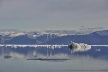 En dal i «Strindbergs Land» på Grønland fotografert i august. (Foto: Bo Elberling)