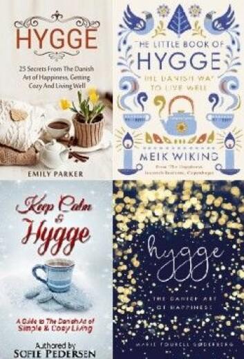 Et lite knippe av bøkene om hygge. (Montasje: forskning.no)