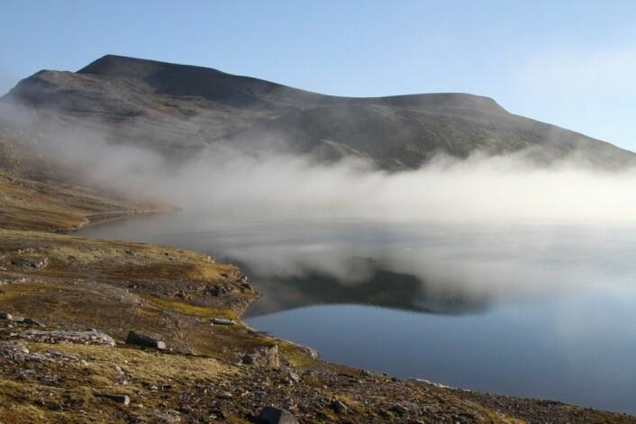 Forskerne fulgte fisken i Ellasjøen gjennom hele året. (Foto: Guttorm Christensen, Akvaplan-NIVA)
