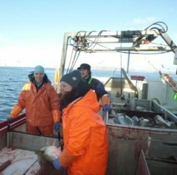 Helle Tessand Baalsrud og Sissel Jentoft på fisketur i Lofoten. (Foto: Paul R. Berg)