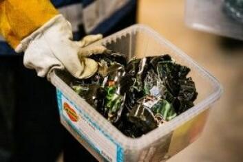 I alt 405 smøreosttuber ble testet. Noen med topp, noen med mat, noen uten noe. (Foto: Julie Gloppe Solem/NTNU)