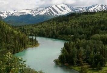 Kommersielt fisker og sportsfiske i Kenai-elven i Alaska er en millionindustri og den viktigste inntektskilden for mange av de som bor i staten. Men det er truet når isbreene forsvinner. (Foto: Wikipedia)