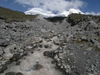 Antisana-vulkanen i Andesfjellene. Forskere har overvåket elven – som får vannet fra isbreer – i mange år. (Foto: Dean Jacobsen)