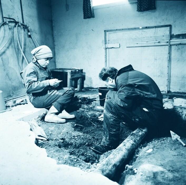 Hanne Thomsen og Rolf Lie i arbeid i 1982. Utgravingen foregikk i en kjeller på Finnøy, mellom kloakkrør. (Foto: Terje Tveit, Arkeologisk museum, Universitetet i Stavanger)