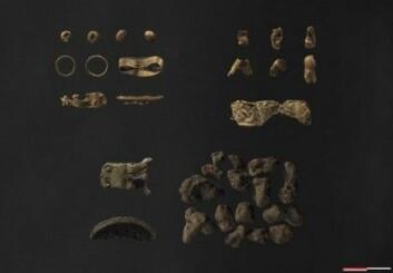 Det er de små ringene, øverst til venstre, som kanskje kan ha tilhørt en kvinnedrakt. (Foto: Moesgård Museum)