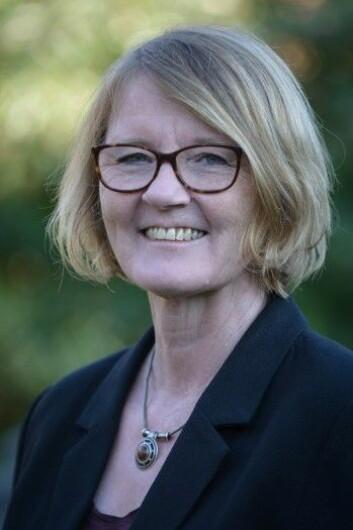 Anette Borchorst har skrevet boken Seksuell chikane på arbejdspladsen - faglige, politiske og juridiske spor. (Foto: Aalborg Universitet)