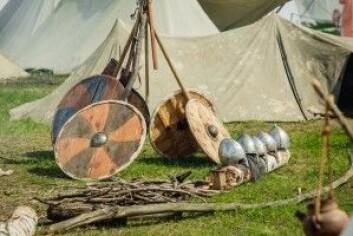 Vikingene slo seg også ned og ble værende på bestemte steder. (Foto: NEstudio / Shutterstock / NTB scanpix)