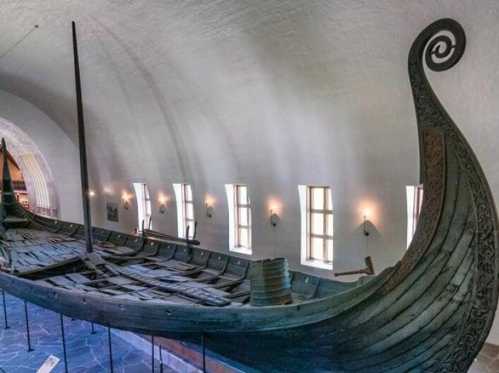 Vikingenes skip stakk ikke særlig dypt ned i vannet. Derfor kunne de seile nærmere land og lettere overraske folk i området. Her et skip fra Vikingskipsmuseet i Oslo. (Foto: Colourbox)