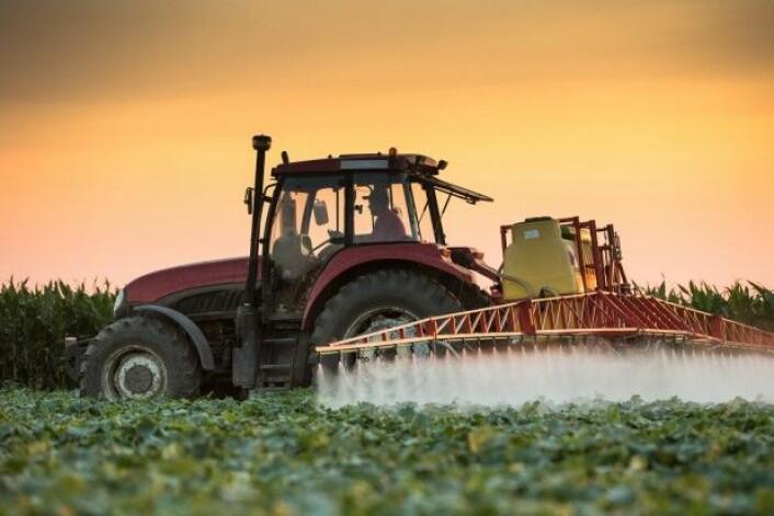 Plantevernmidler og GMO (genmodifiserte organismer) er eksempler på teknologi som ikke brukes i økologiske systemer. (Foto: Fotokostic / Shutterstock / NTB scanpix)