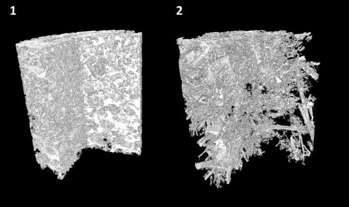Ved å CT-skanne uforstyrrede prøver av leirjord (t.v.) og sandjord fra forsøksfeltet, fikk Torsten Starkloff og kollegene 3D-bilder som tydelig viste porestrukturen til hver enkel prøve. (Foto: Torsten Starkloff)
