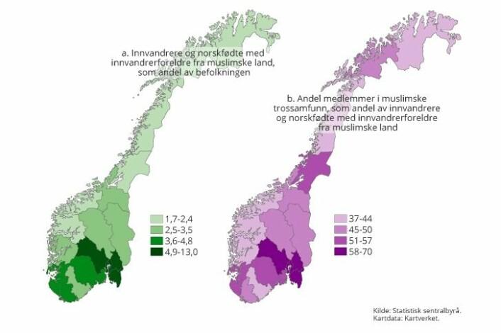 Desto større andel personer med bakgrunn fra et muslimsk land det bor i et norsk fylke (grønt), desto større andel av muslimene i fylket finner SSB-forskerne at er medlemmer i et trossamfunn. (lilla). Buskerud, Oslo, Akershus og Østfold peker seg ut.