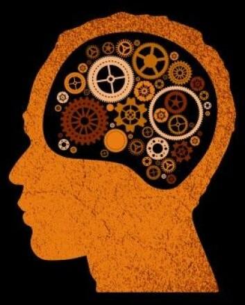 - Tidligere forskning har fokusert prefrontal cortex sin rolle i å hindre tanker, vi har vist at dette gir et ufullstendig bilde. Å hindre uønskede tanker handler like mye om cellene i hippocampus, sier Michael Anderson, en av forskerne. [Illustrasjonsbilde: Jorgen mcLeman / Shutterstock / NTB scanpix]