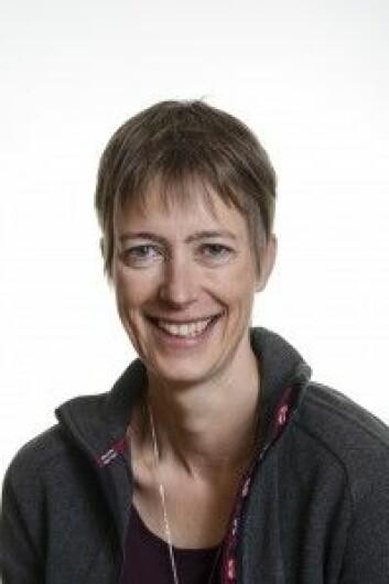 Forsker og lagleder Susanne Buiter ved Norges geologiske undersøkelse. (Foto: NGU)