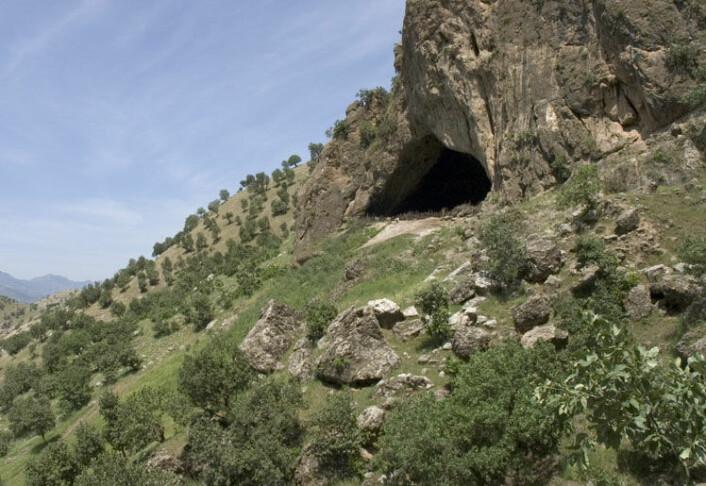 Flere neandertaler-skjeletter har blitt funnet i denne hulen i Irak. (Foto: JosephV/CC BY-SA 3.0)