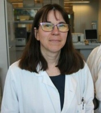 Professor Rebecca Cox er leiar for Influensasenteret i Bergen. (Foto: Britt Kristin Ese / UiB)