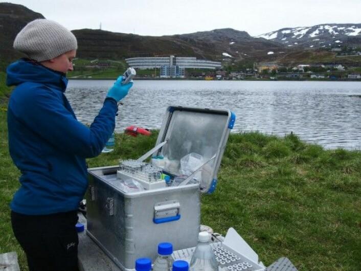 Modellene må sammenliknes med faktiske målinger for å finne ut om de er til å stole på. Her tar NILU-forsker Ingjerd Sunde Krogseth vannprøver ved bredden av Storvannet like ved Hammerfest. (Foto: Guttorm Christensen/Akvaplan-niva)