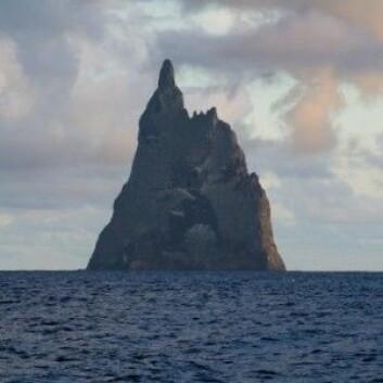 Her er det klippeøya Ball's Pyramid der kjempeinsektet har overlevd. (Foto: Fanny Schertzer)