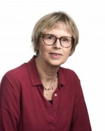 – Barnehageansatte bør være nysgjerrige og ikke redde for å stille spørsmål til flyktningeforeldre, sier Kirsti Tveitereid. (Foto: Hege Mathisen)
