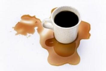 Kaffe er særlig utsatt for skvulpinger, og risikoen for å søle er derfor høy når man går med en kopp. Ved å gå baklengs endrer man rytmen, og kaffen skvulper derfor mindre. (Foto: Ossile / Shutterstock / NTB scanpix)
