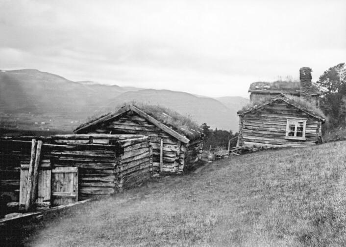 Det døde like mange barn og unge hos velstående gårdbrukere som det gjorde hos fattigere husmenn i Trøndelag på 1800-tallet. Ut fra det konkluderer Lindbekk med at det må ha vært større likhet blant folk i Norge på 1800-tallet enn det var i mange andre land på den tiden. Dette utfordrer tidligere historikere som har skrevet om det samme. Dette bildet er fra husmannsplassen Børja i Oppdal. (Foto: Trøndelag Folkemuseum)