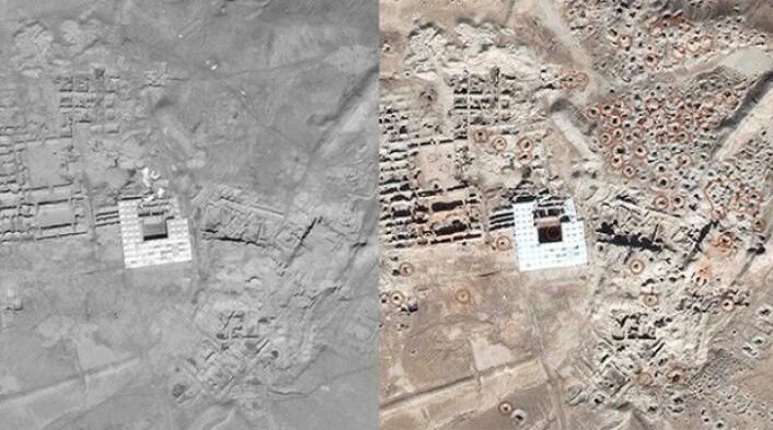 Satellittbilder av oldtidsbyen Mari i det sydøstlige Syria viser tydelig hvordan plyndringen av kulturgjenstander setter spor. Bildet til venstre er fra 4. august 2011, mens bildet til høyre er tatt 11. november 2014. (Foto: Image ©DigitalGlobe | U.S. Department of State, NextView License | Analysis AAAS)
