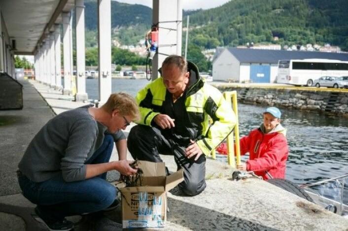 Jan Erik Andersen og sonen Tobias har hytte på Røvær, men bur i Bergen. Dei tok hummaren med i båten heim. Forskar Nina Sandlund tok imot. (Foto: Erlend A. Lorentzen / Havforskingsinstituttet)