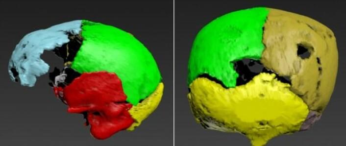 Her ser vi skanningen av kraniet i et moderne dataprogram på Antropologisk Laboratorium. (Foto: Chiara Villa)