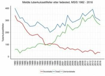Blå kurve viser totalt antall tilfeller av tuberkulose. Grønn kurve viser utenlandskfødte, rød viser norskfødte smittede.<br>(Graf: Folkehelseinstituttet)
