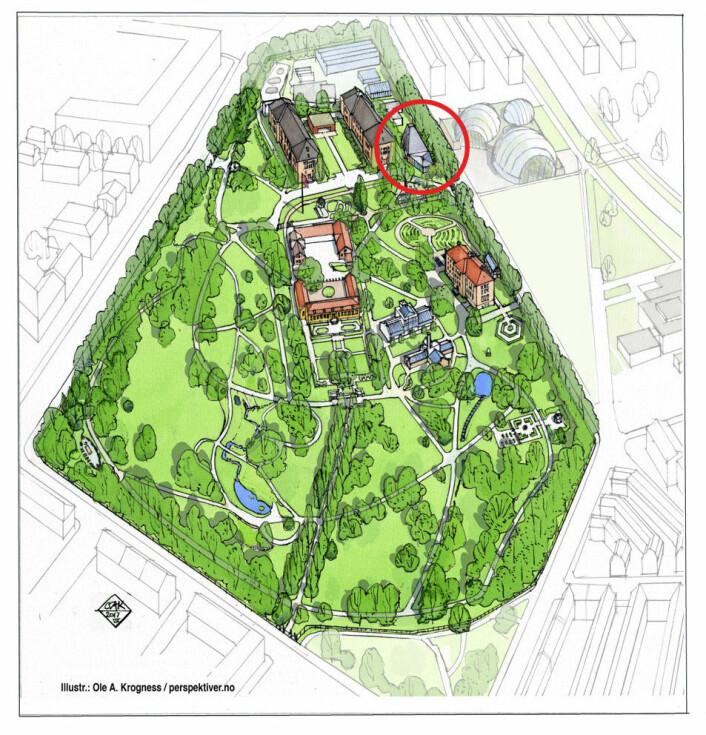 Klimahuset skal ligge i Botanisk hage mellom Brøggers hus (tidligere Geologisk museum) og det fremtidige Veksthuset. (Illustrasjon: Ole A. Krogness, perspektiver.no)