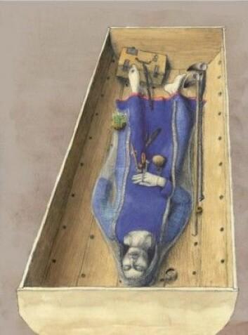 Her ser vi en rekonstruksjon av den gravlagte Fyrkat-kvinnen, som har blitt tolket som volve på grunn av de eksotiske tingene hun hadde med seg i graven, først og fremst en metallstav – en slags tryllestav – og frø fra den giftige bulmeurten. I skriftlige kilder forbindes disse to rekvisittene til volver. (Tegning: Thomas Hjejle Bredsdorff)
