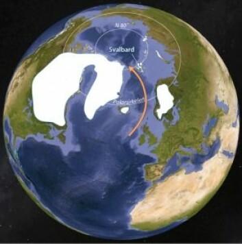Den nordlige halvkule for 11 000 år siden. Det var enda store rester av breene fra siste istid i Skandinavia, Island, Grønland og Nord-Amerika, mens Svalbard allerede var varmere enn i dag. Den røde pila viser det vi i dagligtalen kaller Golfstrømmen. (Grafikk: Eva Bjørseth)