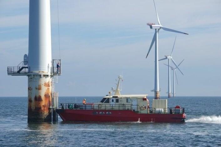 Shoreline lager programvare som kan gjøre drift og vedlikehold på vindmøller til havs mer effektivt. Her ser vi vedlikehold av vindmøllepark i praksis. (Foto: Simen Malmin)