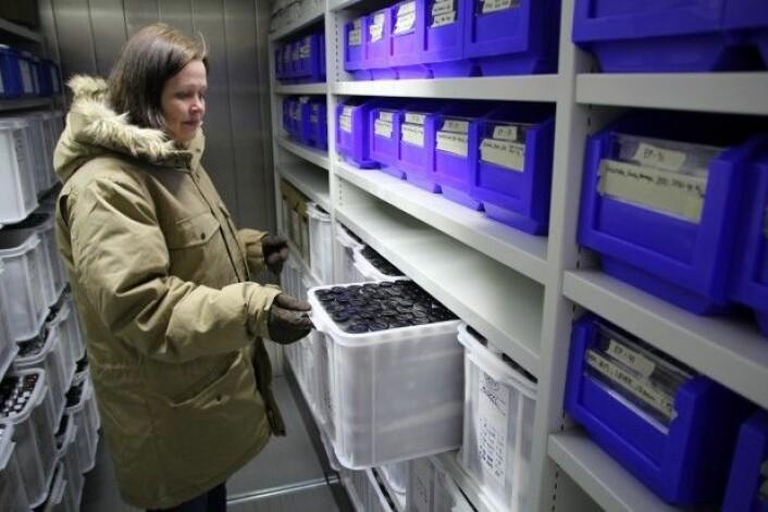 Marte Solhaug Jenssen inne i Miljøprøvebankens frysearkiv som holder en temperatur på 25 minusgrader. (Foto: NIVA)
