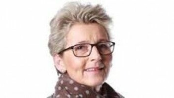 Hilde Dehnæs Hogsnes har i sin forskning funnet at skolelærere nedprioriterer møter med barnehagene. (Foto: Høgskolen i Sørøst-Norge)