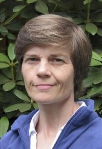 Skogforsker Kjersti Holt Hanssen. (Foto: NIBIO)