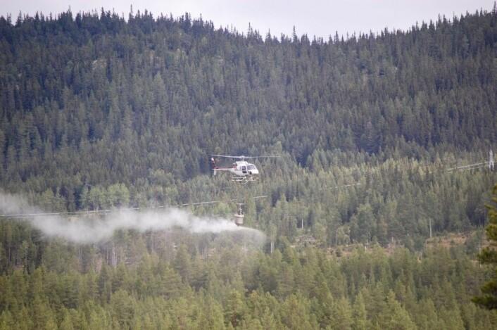 Slik ser gjødslingen ut fra lufta. (Foto: NIBIO)