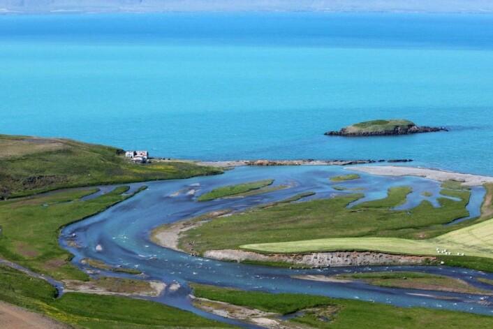 Oversikt over Kolkuós, der det største funnet av klinknagler ble gjort. Tangen ytterst ved elvemunningen er stedet der havnen lå, og bodene stod fra vikingtid til middelalder. Halvøya Elínarhólmi er synlig i bakgrunnen. (Foto: Hörður Geirsson)