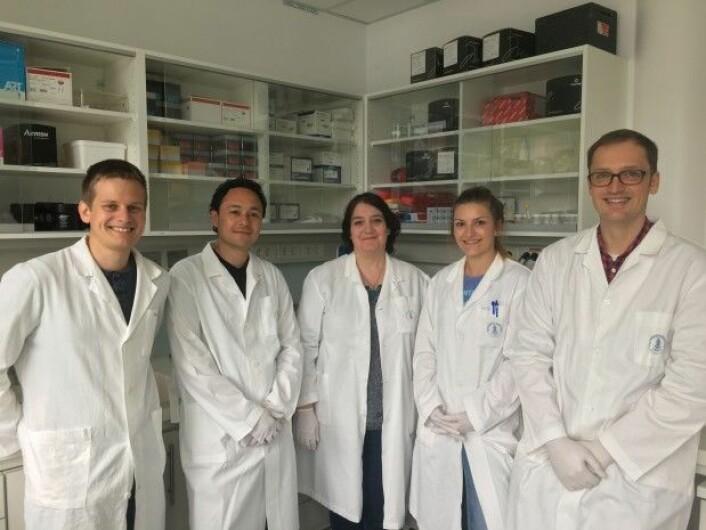 Gruppen i Bergen som jobber på GEMNS-prosjektet. Fra venstre: Thomas Hare, Ivan Rios-Mondragon, Mihaela Roxana Cimpan, Melanie Ostermann og Alexander Sauter. (Foto: UiB)