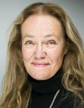 Susanne Søholt er forsker ved By- og regionforskningsinstituttet NIBR på Høgskolen i Oslo og Akershus. (Foto: HiOA)