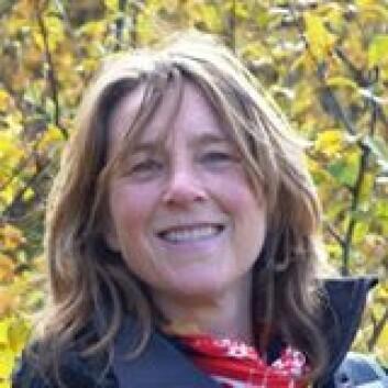Birgitte Seip ved Sykehuset i Vestfold fant at flere kvinner synes kikkertundersøkelser av tarmen er vondt, enn menn.  (Foto: privat)