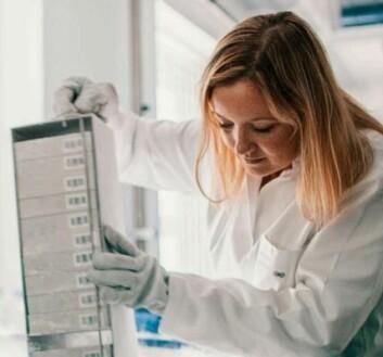Cecilie Kyrø ved Kræften Bekjæmpelse i Danmark forsker på sammenhengen mellom kreft og inntak av fullkorn. (Foto: Nordforsk/Kim Wendt)