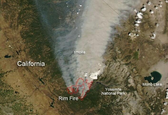 En av brannene forskerne har studert, er Rim fire i California i 2013. Det er en av de største brannene i delstatens historie. På bildet er brannen innenfor de røde strekene. Området med røyk er langt større. (Foto: Jeff Schmaltz Lance/Eosdis Modis Rapid Response Team, GSFC/Lynn Jenner/NASA)
