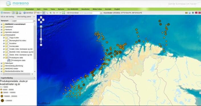 Her en en skjermdump av det interaktive kartet til Mareano, som viser hvor mye mat som finnes i dyrene på havbunnen. Forskerne har beregnet hvor mye energi dyrene representerer, i joule per kvadratmeter per år. (Foto: Skjermdump / Mareano)