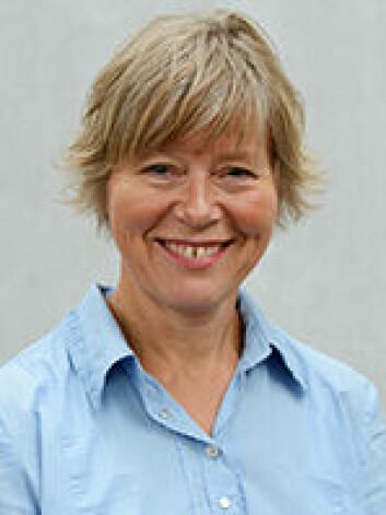 Anne Arnesen er stipendiat ved Universitetet i Oslo. (Foto: UiO)